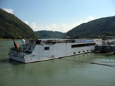 MS Arkona in Grein/Austria